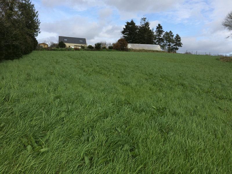 Terrain à Spezet de 646 m² à 8 000 €